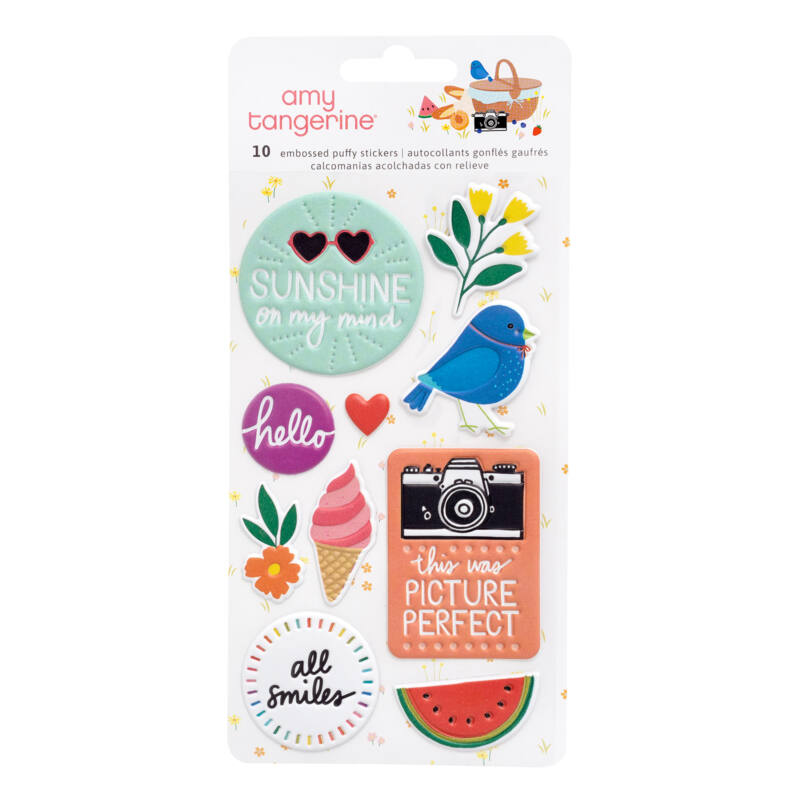 American Crafts - Amy Tangerine - Picnic in the Park Embossed Puffy Stickers (10 Piece)