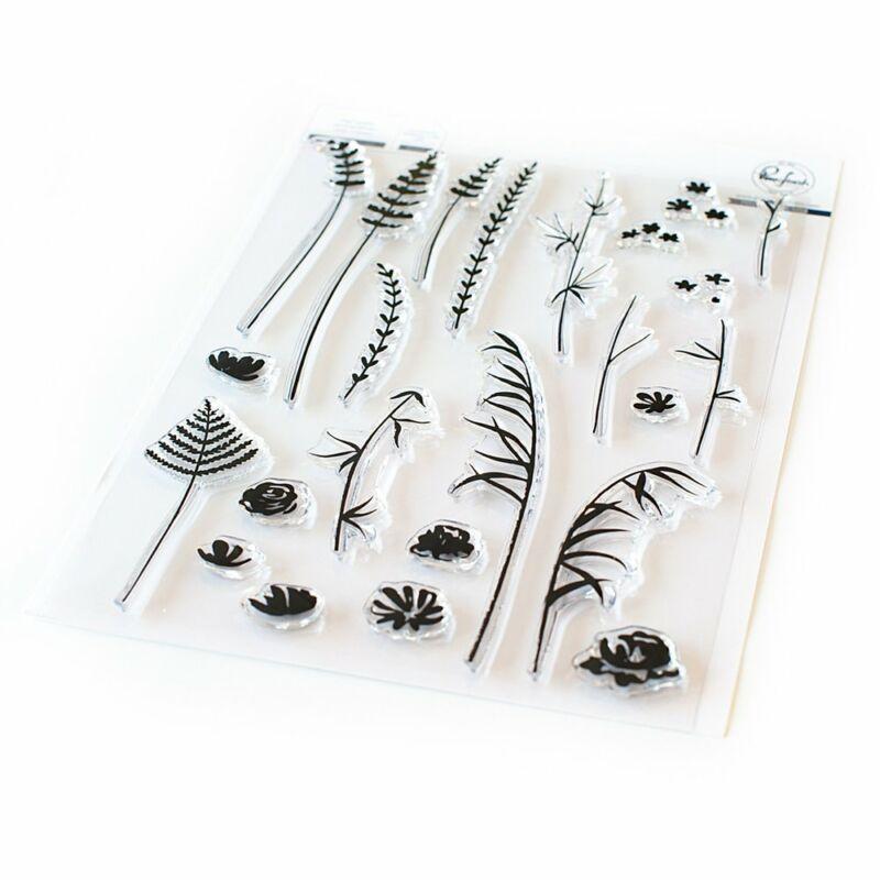 Pinkfresh Studio - Wild flower sketches 6x8 Stamp